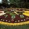 horloge fleurie/floral clock